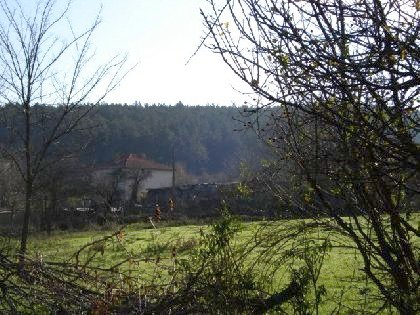 A wonderful opportunity to own a piece of land