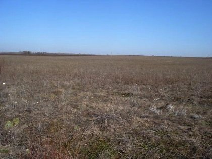 Plot of land suitable for your business in Bulgaria,Property in bulgaria, House in bulgaria , House for sale near Yambol, buy rural property, rural house, rural Bulgarian house, bulgarian property, rural property, buy property near Elhovo, Yambol property,property in Bulgaria, property, Bulgaria, properties, bulgarian properties, Bulgarian, bulgarian property, property Bulgaria, bulgarian properties for sale, buy properties in Bulgaria, Cheap Bulgarian property, Buy property in Bulgaria, house for sale,Bulgarian estates,Bulgarian estate,cheap Bulgarian estate,sheap Bulgarian estates,house for sale in Bulgaria,home in Bulgaria,Bulgarian home, bye home in Bulgaria, Cheap home, Cheap home in Bulgaria