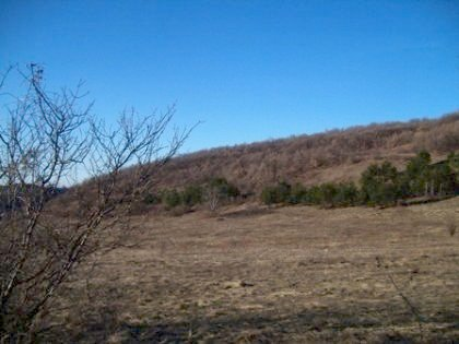 land, plot of land, property, real estate, bulgaria, lovech, buy, invest, bulgarian land, land in bulgaria, bulgarian plot of land, plot of land in bulgaria, buy bulgarian land, buy bulgarian plot of land, invest in bulgarian plot of land