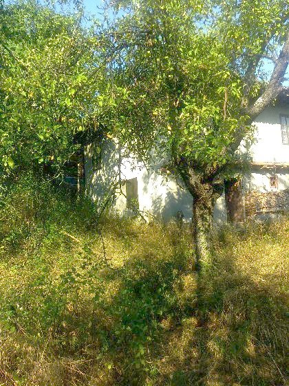 House for sale near Veliko Tranovo, house near resort, Veliko Tranovo beach resort, beach resort, property near resort, buy property in resort, bulgarian property, property near Veliko Tranovo property Veliko Tranovo, house near bulgarian resort, Veliko Tranovo resort House for sale near Varna, house near resort, Veliko Tranovo holiday resort, holiday resort, property near resort, buy property in resort, bulgarian property, property near Veliko Tranovo property Veliko Tranovo, holiday house near sea Land in Bulgaria, Bulgarian land, land near beach, Bulgarian property, property land, property in Bulgaria, property near beach, Land in Veliko Tranovo, land near Veliko Tranovo, Veliko Tranovo property, property investment, investment house in Bulgaria, Bulgarian house, house near beach, Bulgarian property, property house, property in Bulgaria, property near beach, house in Veliko Tranovo, house house near Veliko Tranovo, balchik property, property investment, investment, apartment, apartmen in Bulgaria, buy apartment in Bulgaria, Bulgarian apartments, apartment in Bulgaria for sale